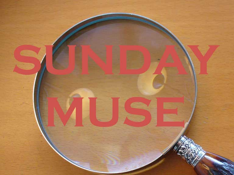sunday muse refocus edition